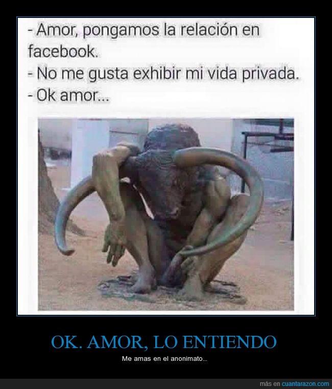 amor,cuernos,entiendo,facebook,publicar,publico,relacion,Toro