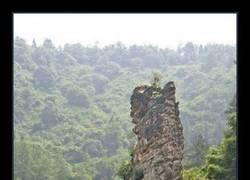 Enlace a Espectacular monumento a los elefantes en India