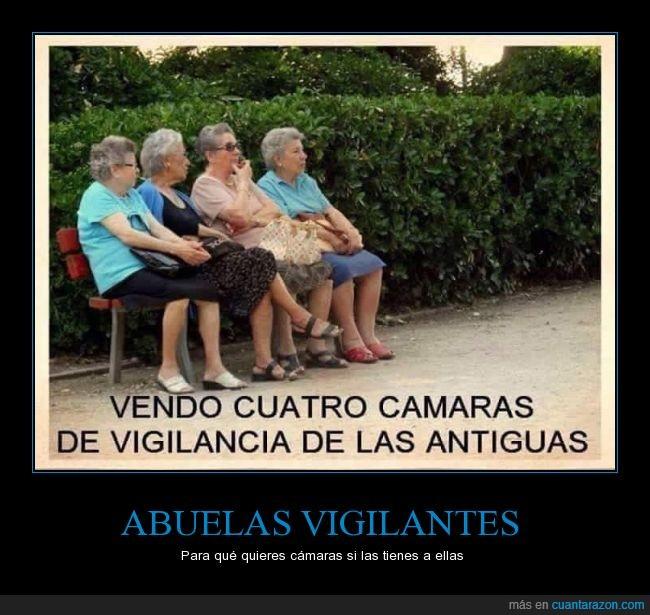 abuelas,banco,cámara,chafarderas,cotillas,marujas,Ofertas
