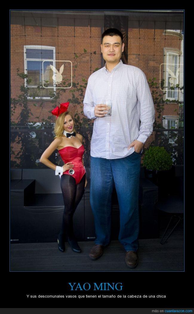 alto,altura,baloncesto,basket,conejita,ex jugador,gigante,grande,Payboy,revista,Vaso,Yao Ming