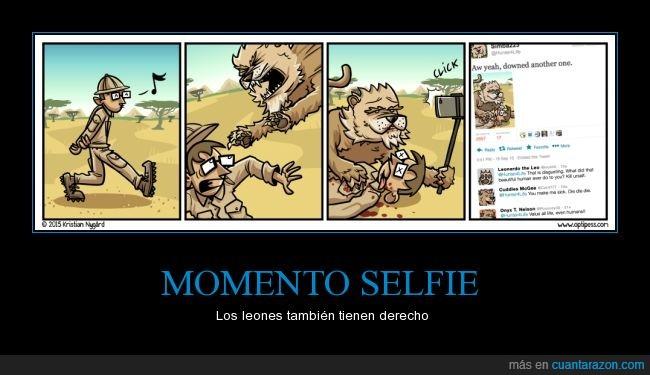 comer,comida,compartir,leon,palo,selfie