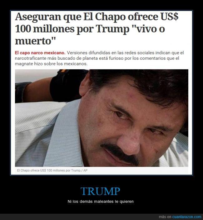 chapo,Chapo Guzman,mexico,narcotrafico,trump
