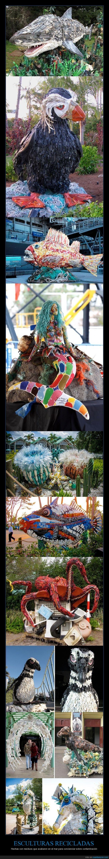 agua,basura,contaminación,deshecho,escultura,figura,mar,oceano,reciclada,reciclaje