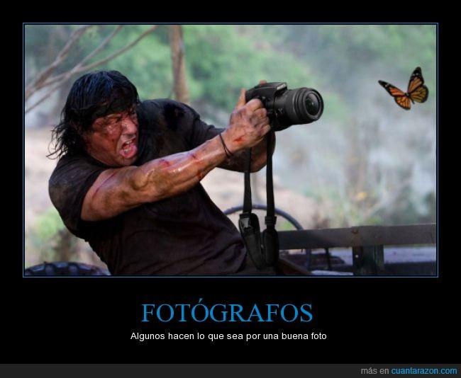 captura,chop,fotografía,fotografo,fotos,mariposa,montaje,rambo,tomar
