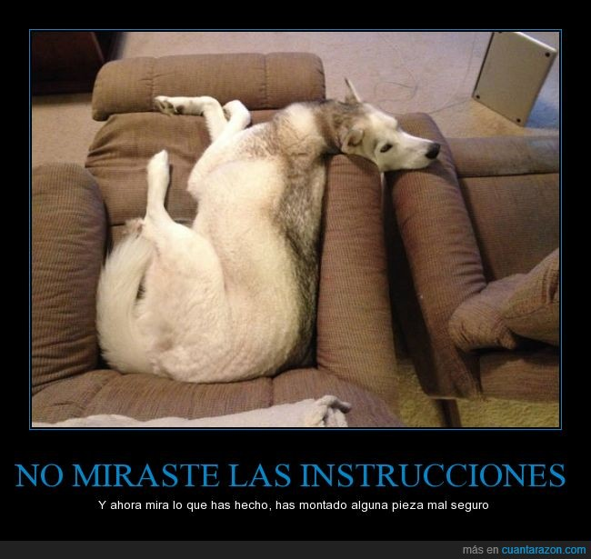 hueso,husky,instrucciones,perro,pieza,roto,sofa