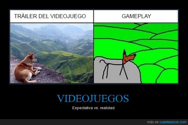 expectativa,gameplay,gamer,realidad,videojuegos