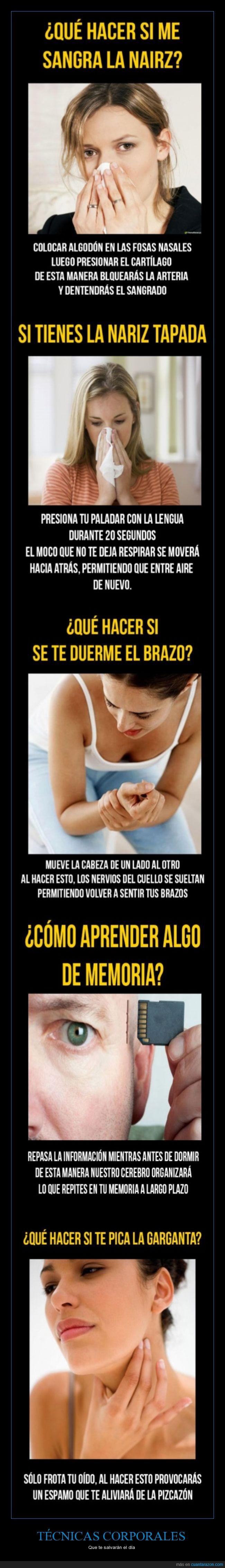 aprender,cuerpo,curar,dormir,facil,garganta,memoria,picar,técnica dolor