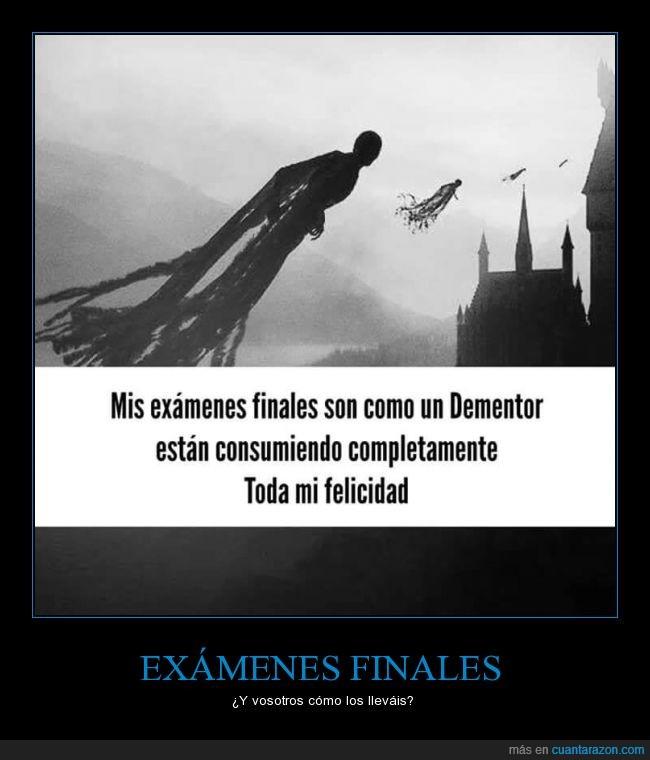 alegría,consumiendo,consumir,dementor,estudiar,examen,felicidad,final,Harry Potter