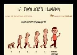 Enlace a Aprendamos la verdad sobre la evolución :)