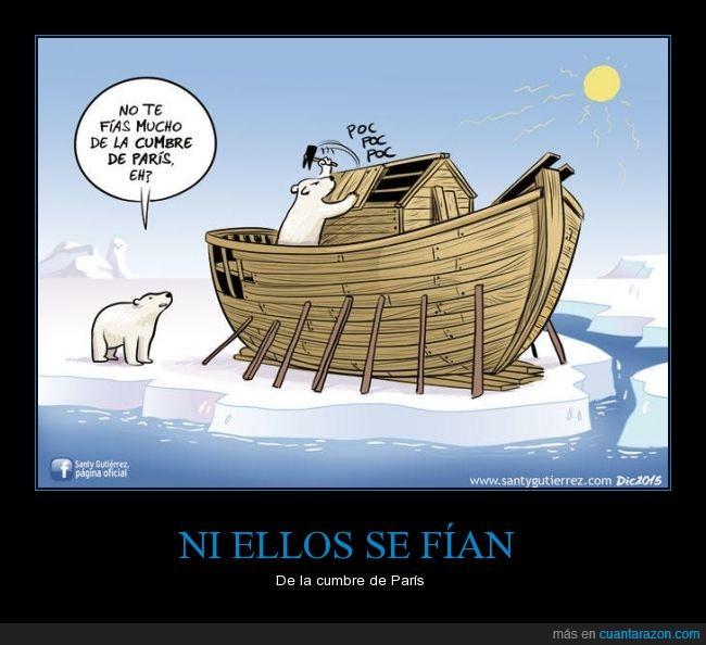 agua,arca,deshielo,diluvio,inundacion,noe,oso,polar