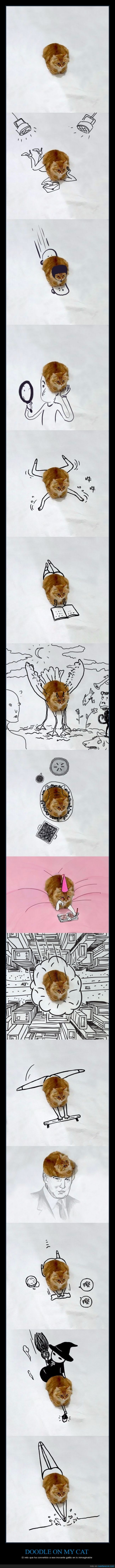 cambiar,chop,dibujar,doodle,gato,photoshop,reto