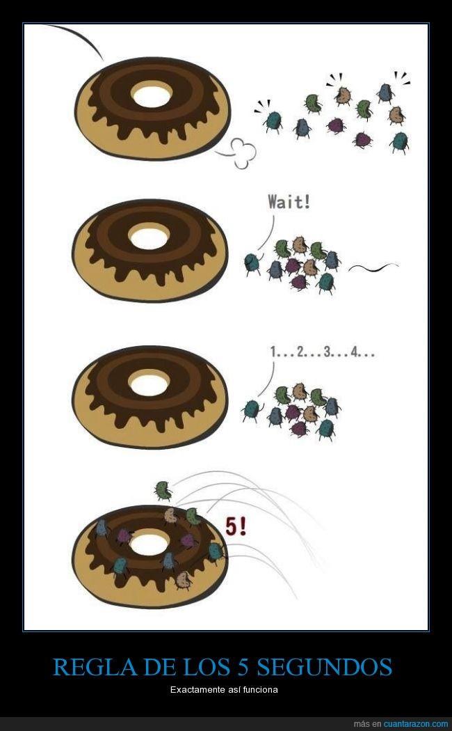 caer,donut,esperar,germenes,microbios,Pan,regla,saltar,segundo,subir,suelo