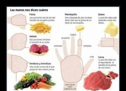 Enlace a La cantidad correcta de cada alimento