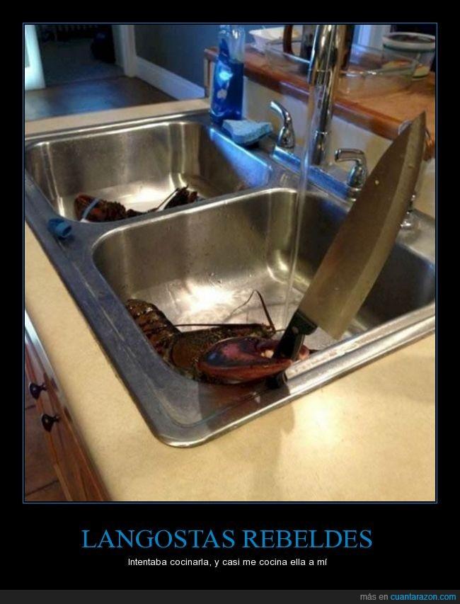 ataque,cocinar,cuchillo,langosta