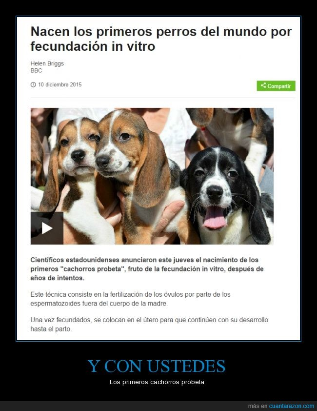Beaker,Buddy,Cannon,ciencia,fecundación in vitro,foto,Ivy,Nelly,perro,realidad,Red y Green