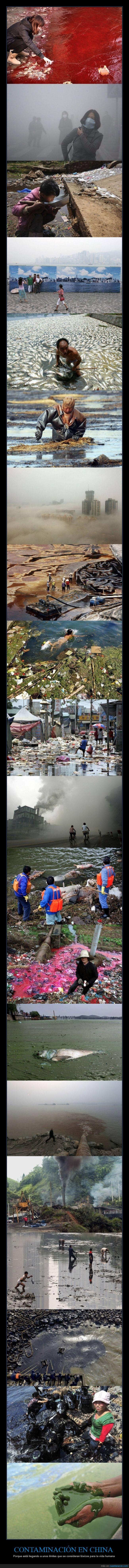 china,contaminación,drama,medio ambiente,peligro,suciedad,toxicidad,toxico