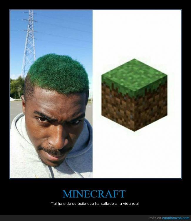 bloque,chico,minecraft,negro,peinado,pelo,tierra,tinte,verde