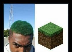 Enlace a ¿Os gusta el Minecraft? Él no piensa en otra cosa...