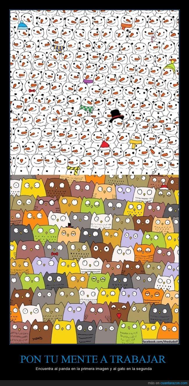 buho,buscar,gato,muñeco,nieve,panda