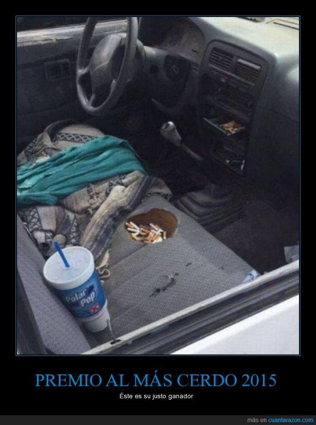 asco,asiento,bebida,cerdo,cigarro,coche,colillas