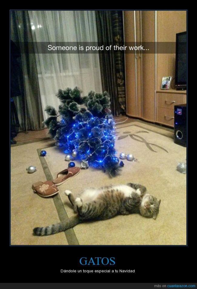 árbol,esferas,felinos,gatos,navidad,orgullo,orgulloso,tirar,travesura