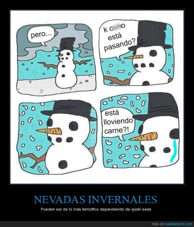 carne,llorar,llover,muñeco,nevada,nevar,nieve,tristeza