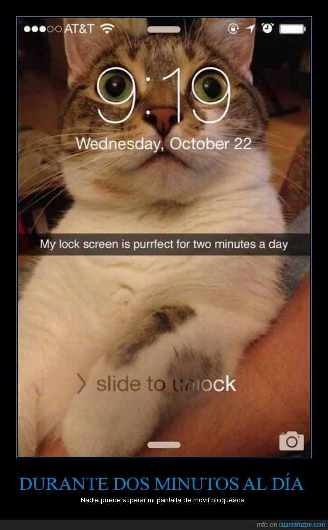 gafas,gato,movil,nueve,ojos,pantalla
