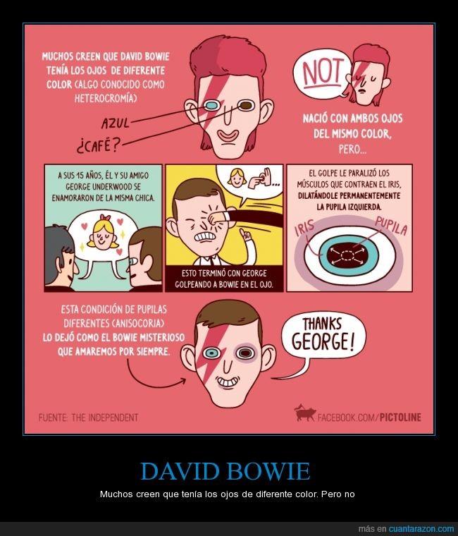 amigos,anisocoria,color,David bowie,dilatación,George,heterocromia,ojos,pupila