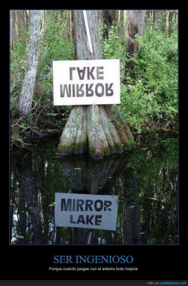 agua,ingenio,ingenioso,inteligente,lake mirror,reflejo