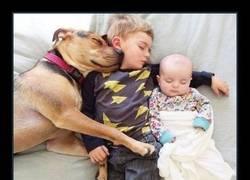 Enlace a Los tres mejores amigos :D