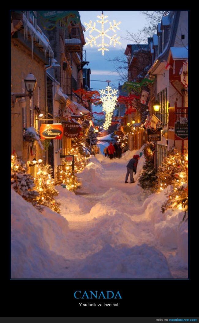 belleza,calle,canada,frio,invierno,luces,nieve