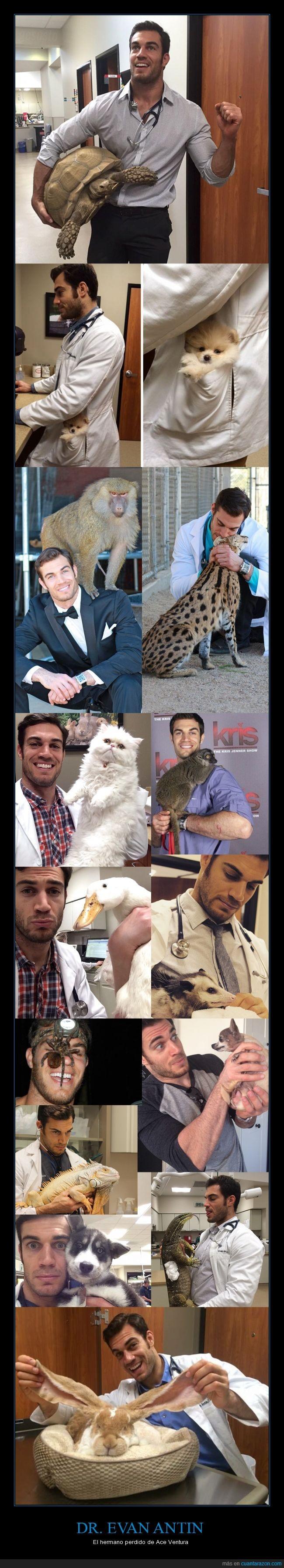 Animales,conejo,doctor,Dr Evan Antin,gato,Instagram,mono,pato,perro,Veterinario