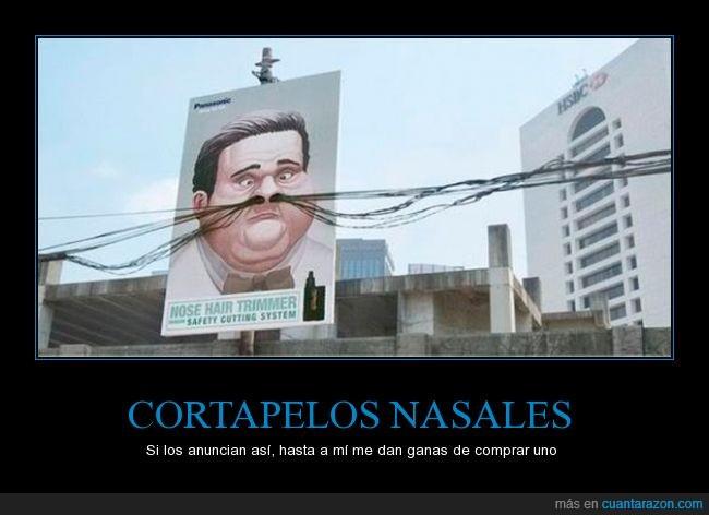 cartel,igenio,nariz,nasal,pelo,publicidad,vello
