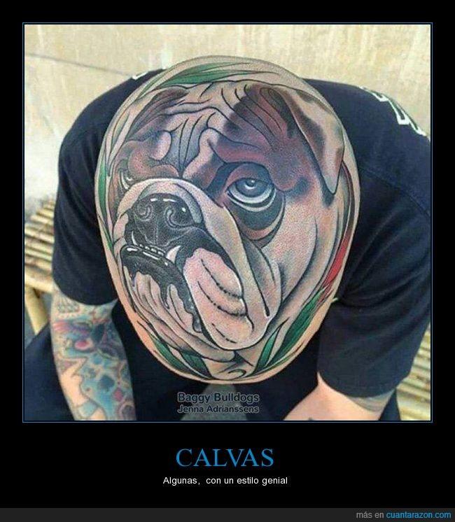 bulldog,cabeza,calva,can,perro,tatuaje