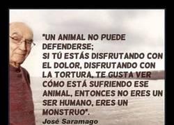 Enlace a Todos aquellos que disfrutan viendo sufrir a un animal son unos... (Acaba la frase)
