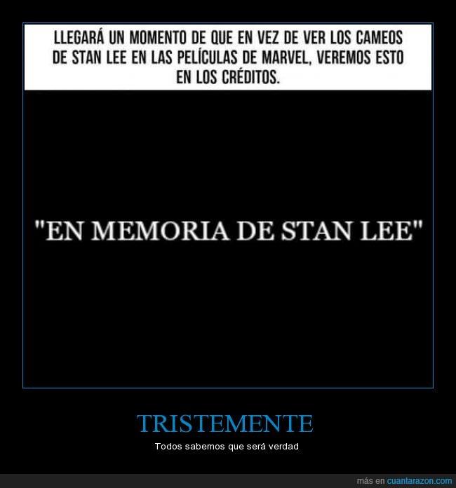 cameo,héroe,marvel,memoria,morir,Stan Lee