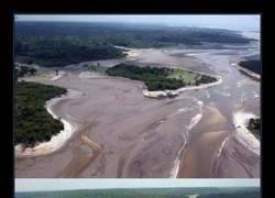 Enlace a Da mucha tristeza ver lo que le está pasando al Amazonas :(