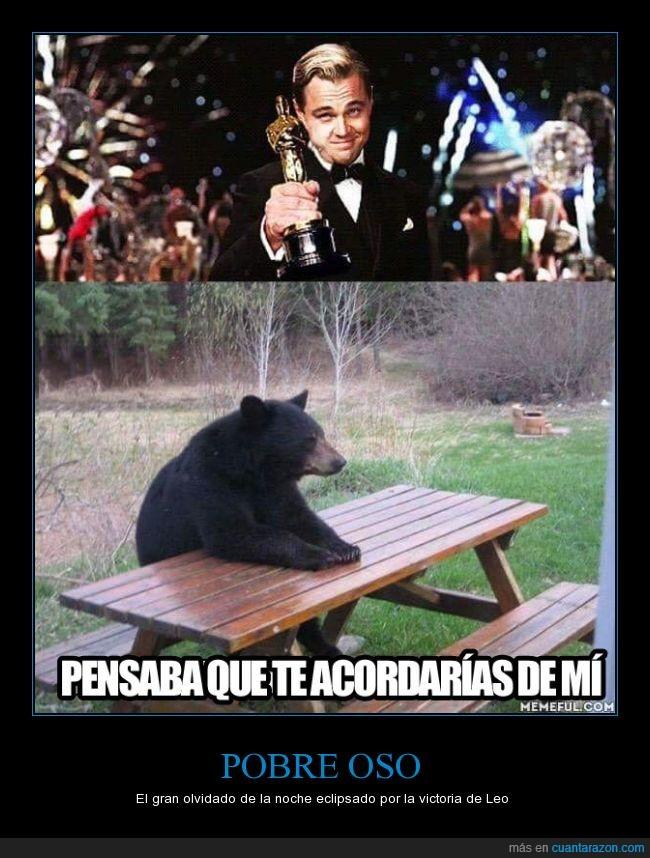 El Renacido,Leonardo Dicaprio,oso,The revenant