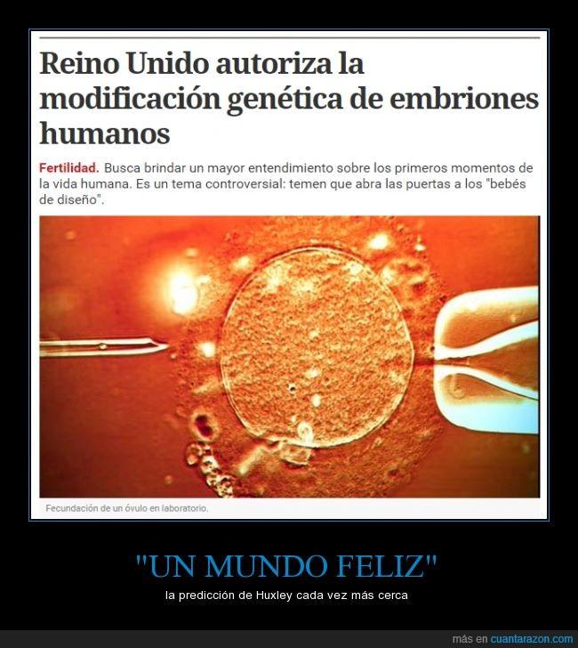embrión,genérica,genética,humano,huxley,modificación,ovulo,un mundo feliz
