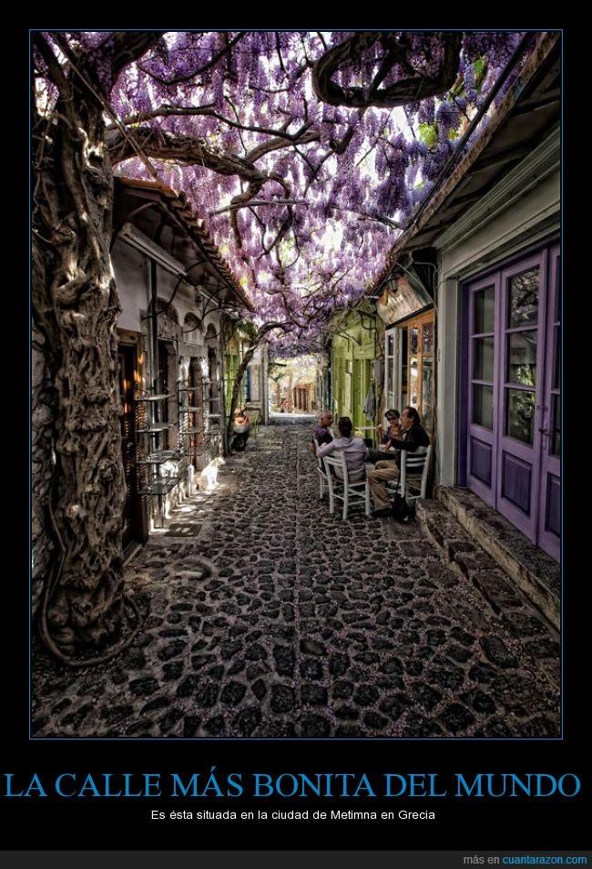 calle,ciudad,flores,grecia,hermoso,Lesbos,Metimna