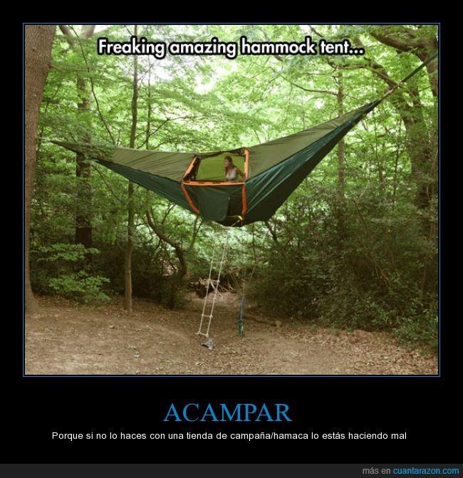 acampar,arboles,bosque,hamaca,sorprendente,tienda de campaña