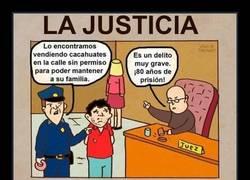 Enlace a La ley no es igual para todos