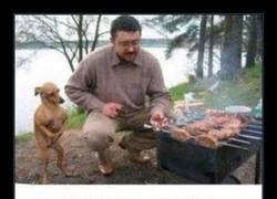Enlace a Pobre Dobby, tiene hambre...