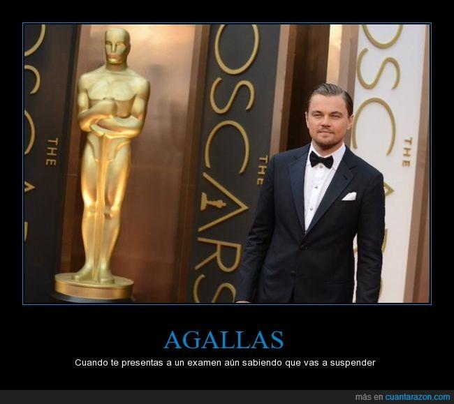 actor,cine,el renacido,hollywood,leonardo dicaprio,oscar,the revenant