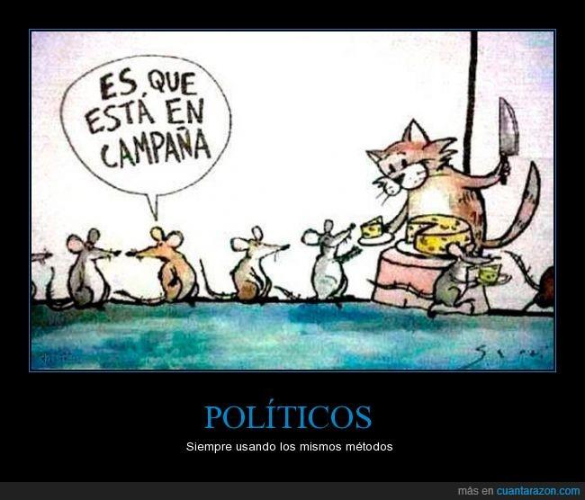 campaña electoral,gatos,queso,ratones