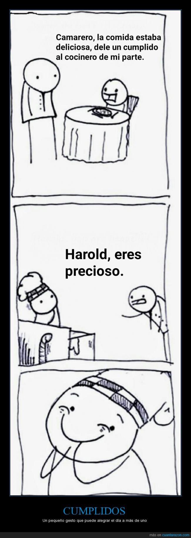 camarero,cocinero,comida,cumplido,feliz,Harold,oh stop it you,precioso