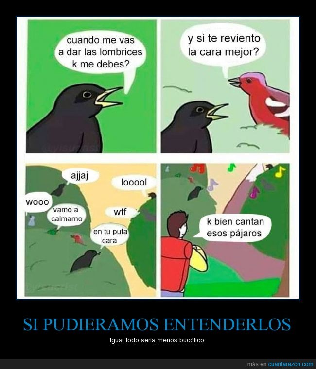 ave,aves,cantar,canto,debes,dinero,lombrices,oir,pajaro,semillas