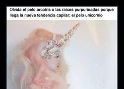 Enlace a ¿Quieres ver qué es eso del pelo unicornio con algunos ejemplos muy... ''curiosos?
