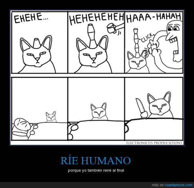 cuchillo,dormir,foto,gato,hombre,humano,matar,paciencia,reír,risas,video