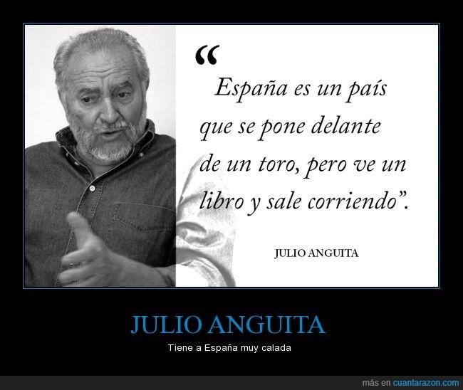 delante,España,Julio Anguita,libro,politica,toro,valor